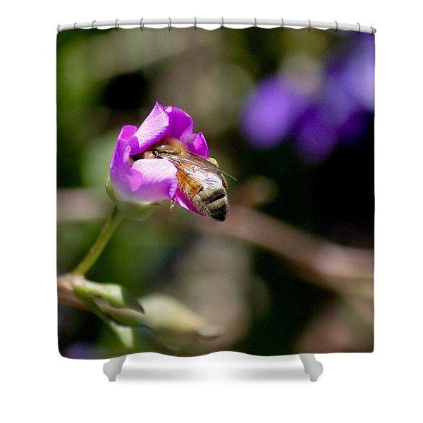 Bashful Bee  Shower Curtain