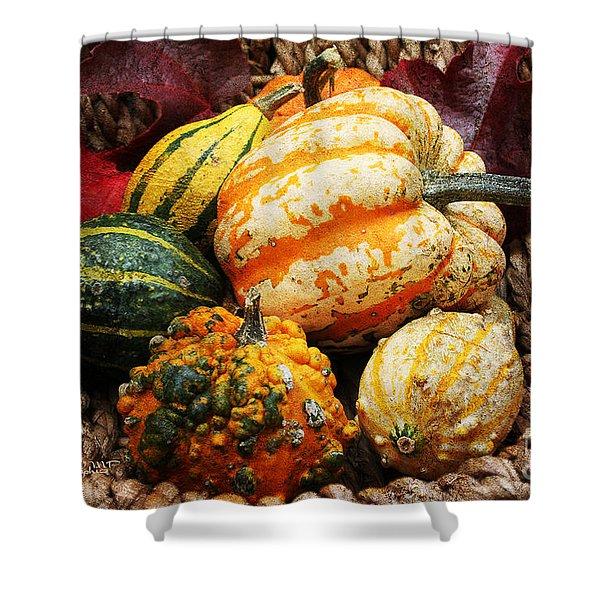 Basket Of Pumpkins Shower Curtain