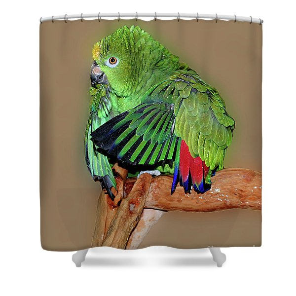 Bathing Beauty Amazon Shower Curtain
