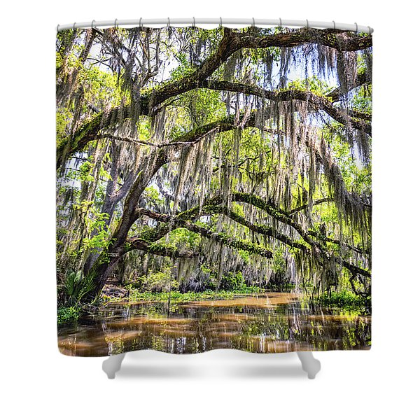 Bayou Cathedral Shower Curtain