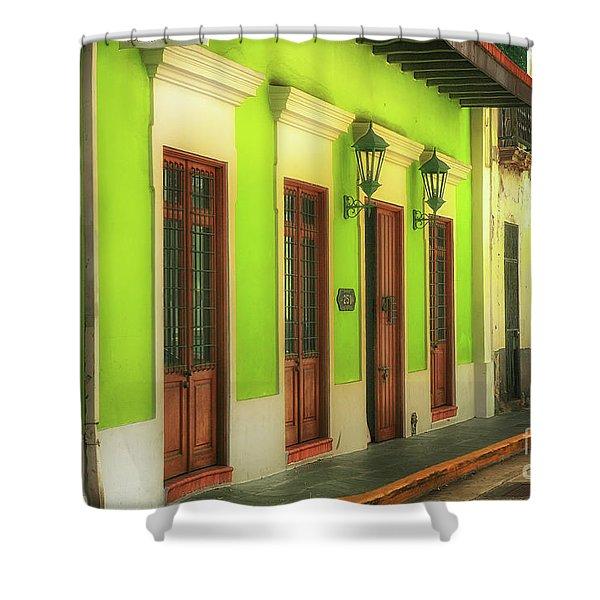 Bazare De Arte Shower Curtain