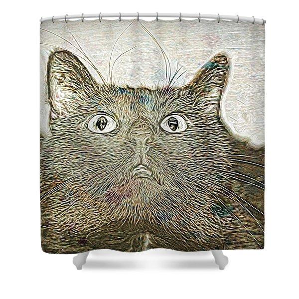 Bb Gazing Shower Curtain
