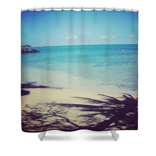 Beach And Palm Trees Shade Shower Curtain