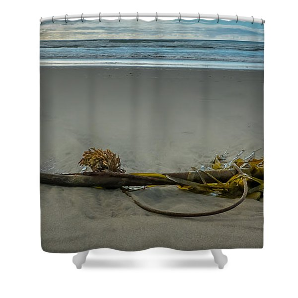Beach Bull Kelp Laying Solo Shower Curtain