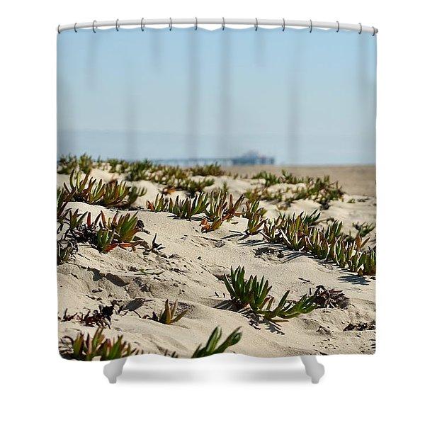Beach Dune Shower Curtain