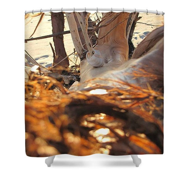 Beach Wood Shower Curtain
