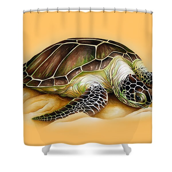 Beached For Promo Items Shower Curtain