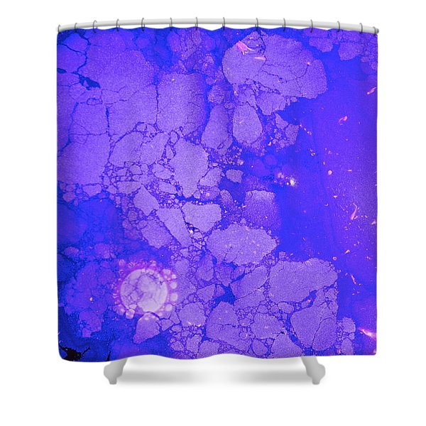 Shower Curtain featuring the photograph Beacons On The Periphery 3015ad   by Cliff Spohn