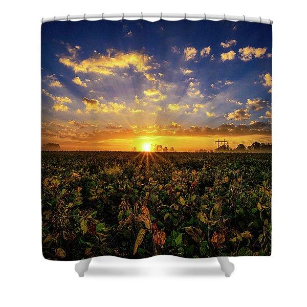 Bean Field Dawn Shower Curtain