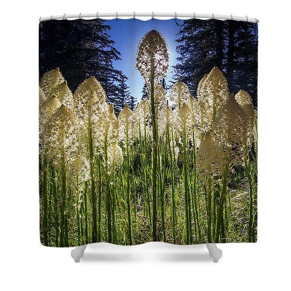 Beargrass In Bloom Shower Curtain