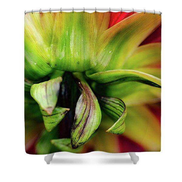 Beautiful Backside Shower Curtain