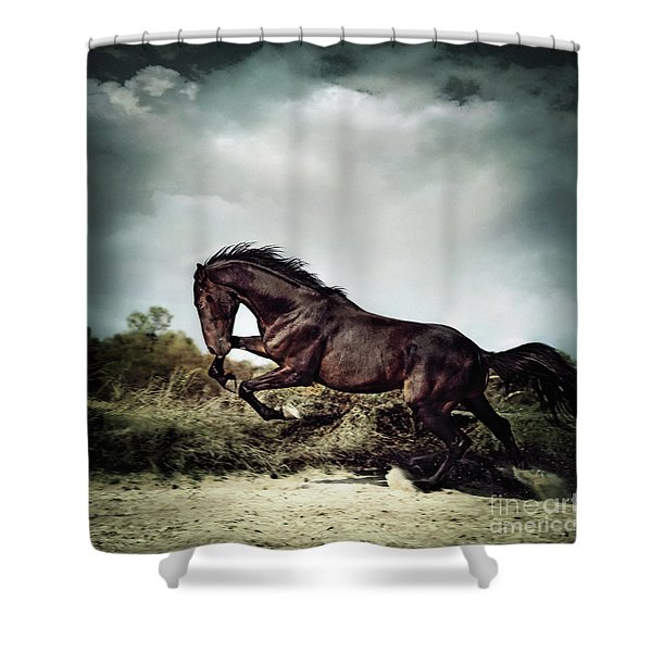 Beautiful Black Stallion Horse Running On The Stormy Sky Shower Curtain