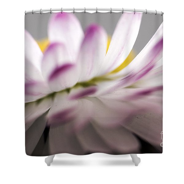 Beautiful Colorful Image About Daisy Flower Shower Curtain