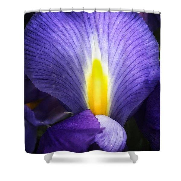 Beautiful Flame Shower Curtain