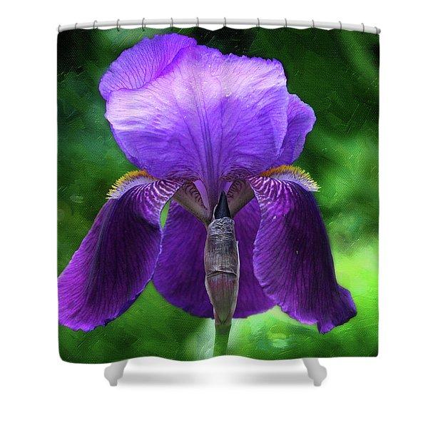 Beautiful Iris With Texture Shower Curtain
