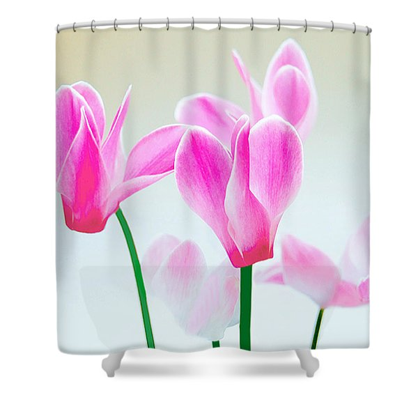 Beautiful Pink Shower Curtain