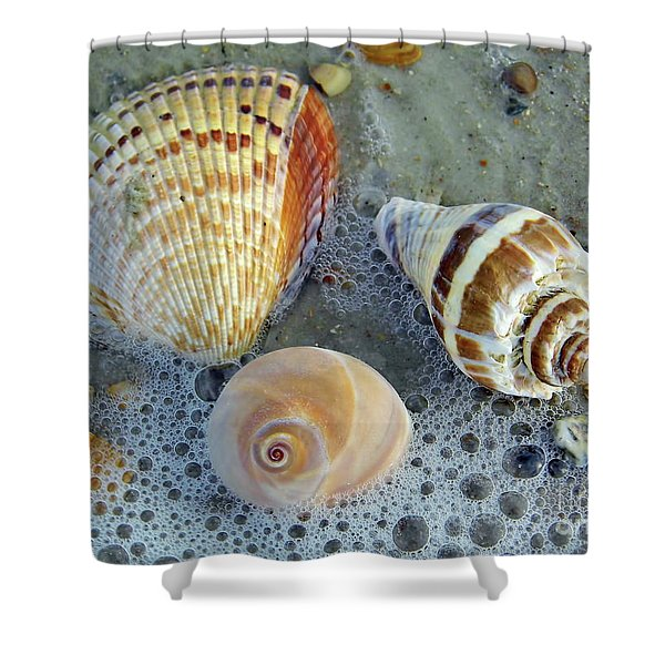Beautiful Shells In The Surf Shower Curtain