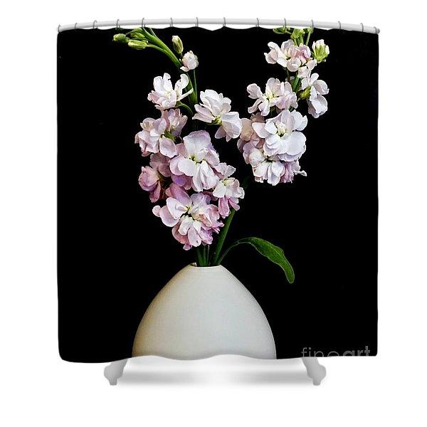 Beautiful Stock Flowers Shower Curtain