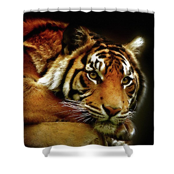 Beautiful Tiger Eyes Watching You Shower Curtain