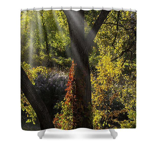 Beautiful Woodlands Shower Curtain