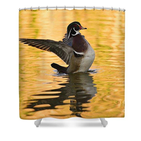 Wood Duck Sunset  Shower Curtain