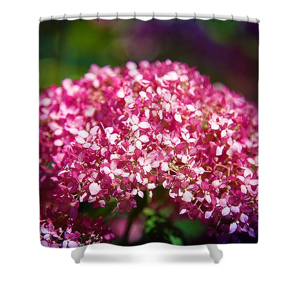 Beauty In Pink Shower Curtain