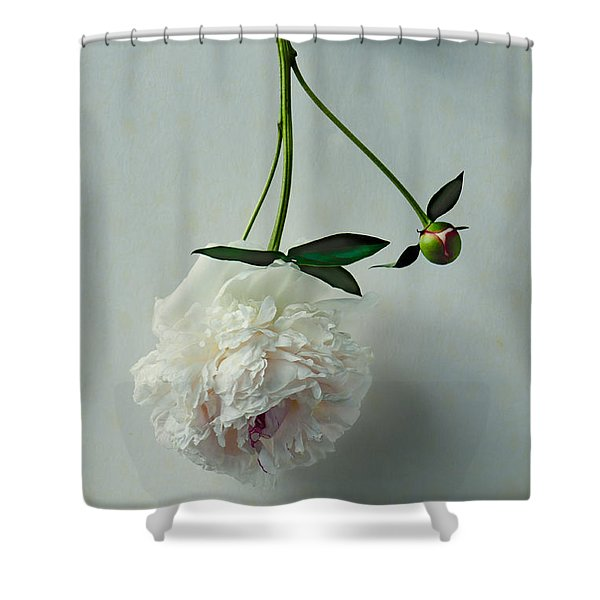 Beauty Suspended Shower Curtain