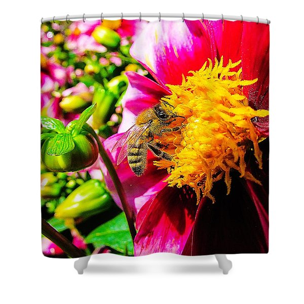 Beauty Of The Nature Shower Curtain