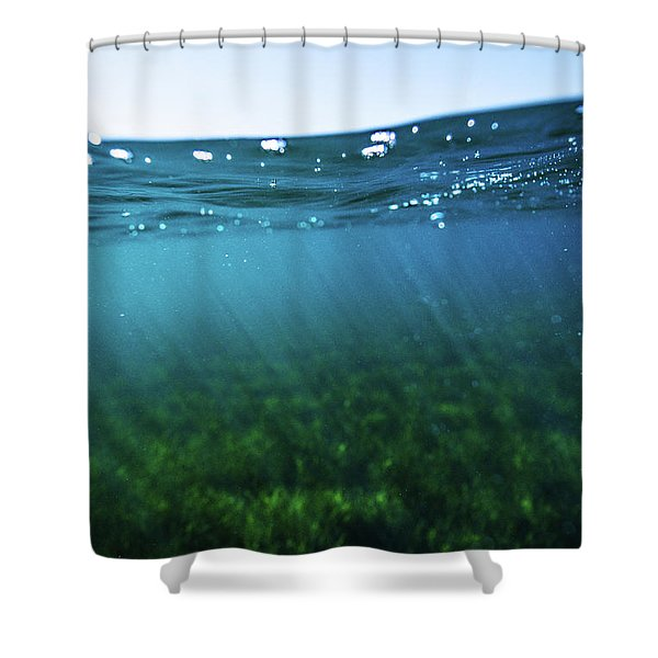 Beauty Under The Water Shower Curtain