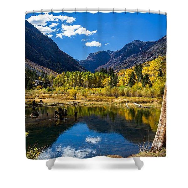 Beaver Pond Shower Curtain
