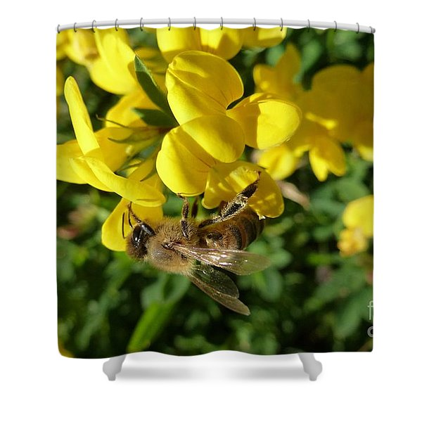 Bee And Broom In Bloom Shower Curtain