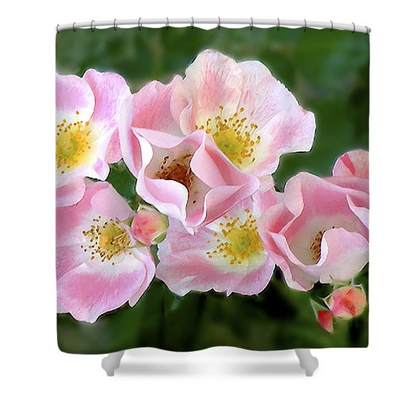 Bee And Roses Shower Curtain