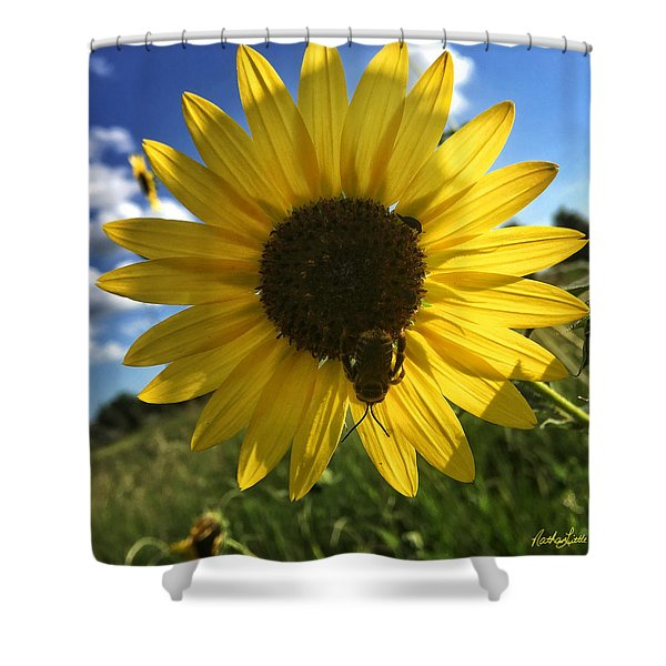 Bee And Sunflower Shower Curtain