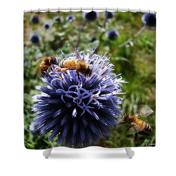 Bee Circles Shower Curtain