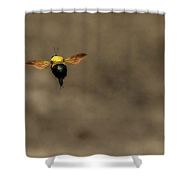Bee Dance Shower Curtain