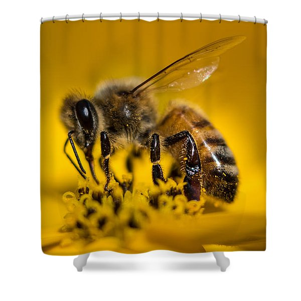 Bee Enjoys Collecting Pollen From Yellow Coreopsis Shower Curtain