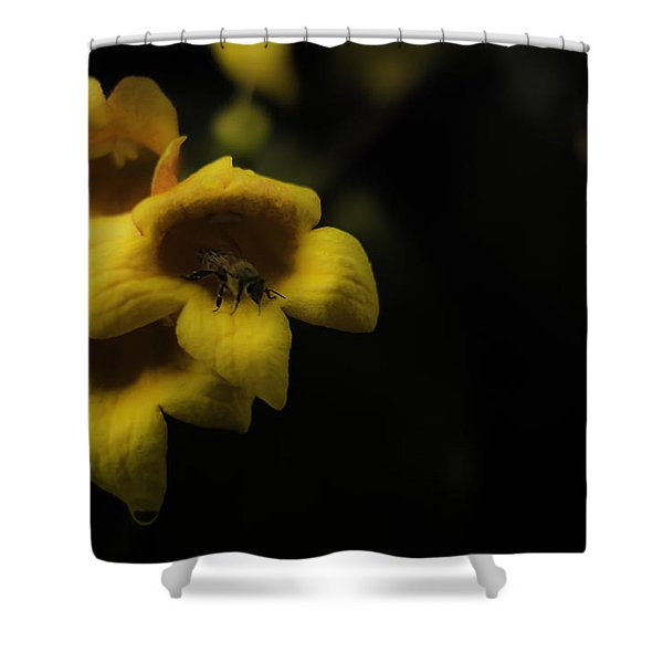 Bee In A Trumpet Shower Curtain