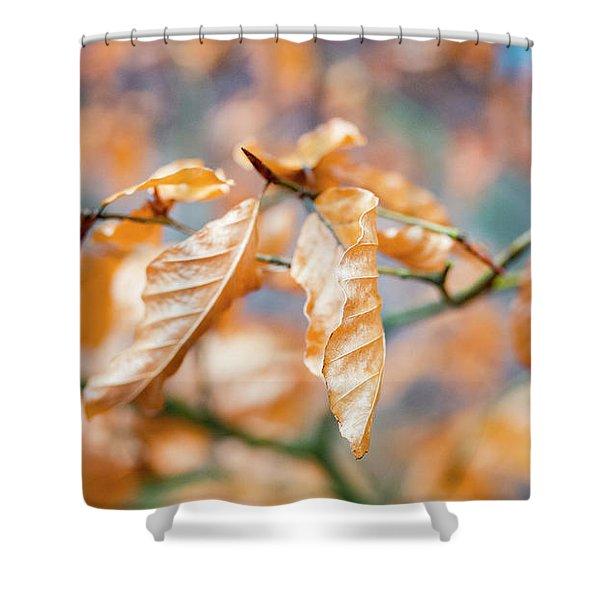Beech Garland Shower Curtain