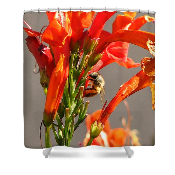 Day In A Life Of A Bee Shower Curtain