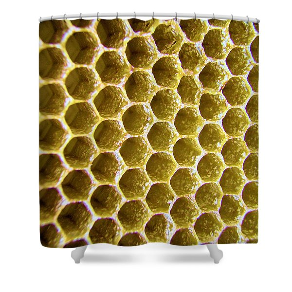 Bee's Home Shower Curtain