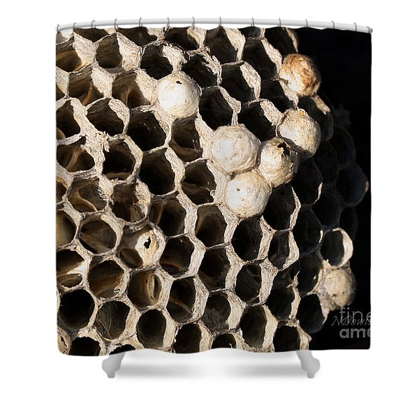 Bee's Nest Shower Curtain