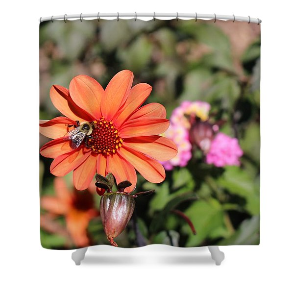 Bees-y Day Shower Curtain