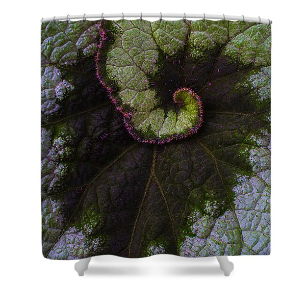 Begonia Leaf Close Up Shower Curtain
