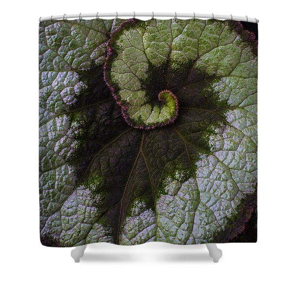 Begonia Leaf Heart Shaped Shower Curtain