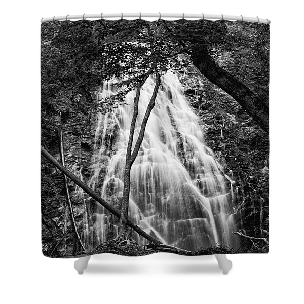 Behind The Tree-bw Shower Curtain