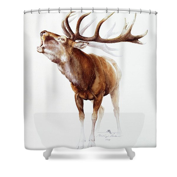 Belling Stag Watercolor Shower Curtain