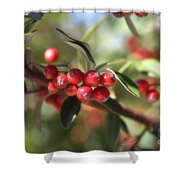 Berry Delight Shower Curtain