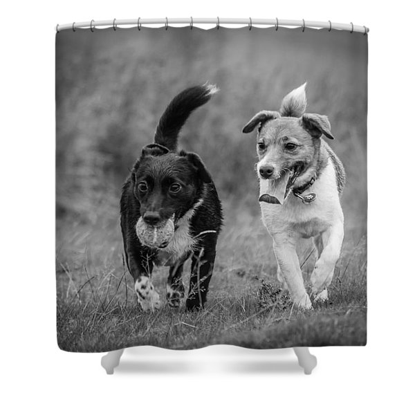 Shower Curtain featuring the photograph Best Buddies by Nick Bywater