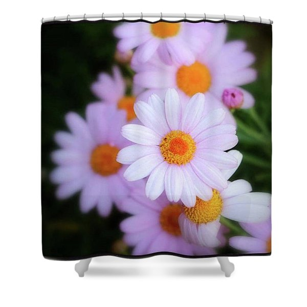 Shower Curtain featuring the photograph Best Wishes In This Time Of Loss by Mr Photojimsf