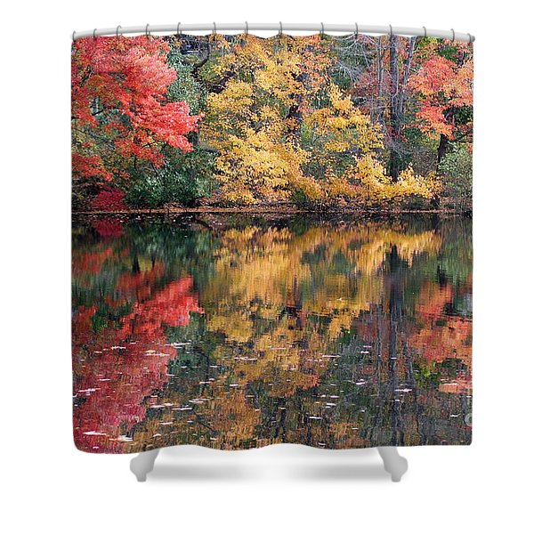 Betty Allen's Vibrant Colors Shower Curtain